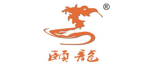 上海颐龙国际货运代理有限公司