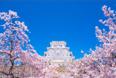 深圳到日本专线公司有哪些?日本专线物流公司哪家好?