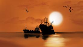 船公司通知:8月起,出口印度必须提供货值数据!