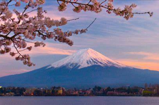 发日本专线有哪些,日本物流专线公司哪家强?