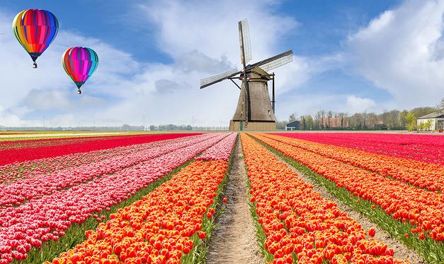 荷兰专线小包运输要多久?荷兰小包运输公司哪家好?
