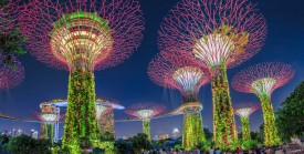 东南亚跨境电商平台有哪些?东南亚电商平台汇总Shopee/Lazada…
